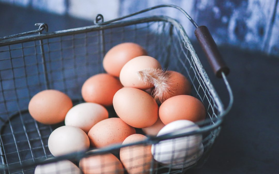 What I learnt about egg health while trying to conceive