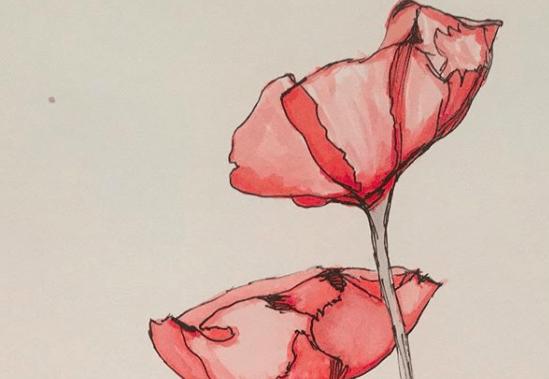 Inspiring Stories Poppy Seed