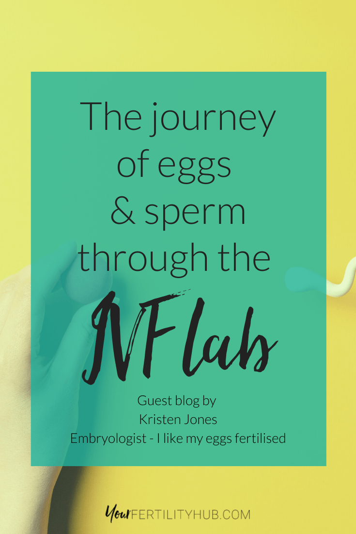 Kristen Jones - The journey of eggs and sperm in the IVFla